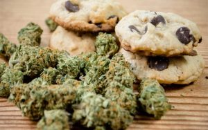 Weed Biscuits