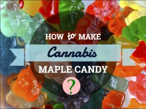Cannabis Maple Candy