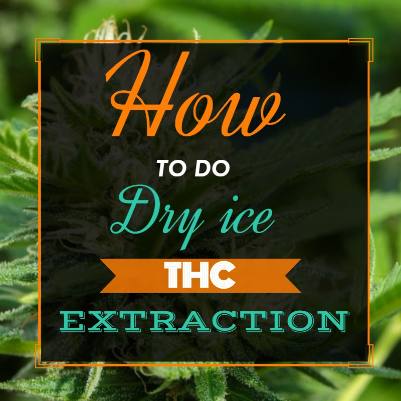 Dry Ice THC Extraction