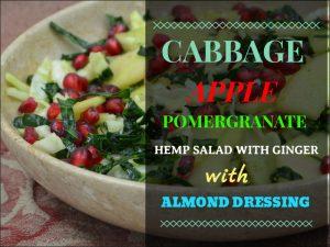 Cabbage, Apple and Pomegranate Hemp Salad